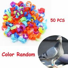 50 PCS Random Duck Hen Chicken Poultry Leg Band Clip Foot Rings Parrot Pigeon
