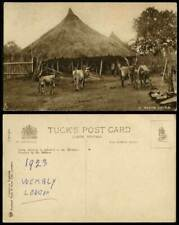 London Collectable Ethnic Postcards