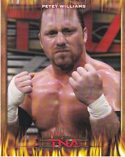 WWE TNA Wrestling Petey Williams 8x10 promo photo