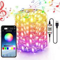 Smart RGB Fairy String Light Christmas Decoration Bluetooth 4.0 APP Remote Music