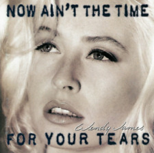 WENDY JAMES Now Ain't The Time For Your Tears CD 1993 10-Tracks *VG w/hole* sryb