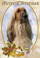 Afghan Hound Dog A6 Christmas Card Design Xafghan-5 by Paws2print
