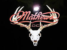 "Mathews skull mount with red Mathews 16"" x 13"""