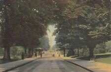 Royal Victoria Park, BATH, Somerset