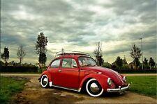 Portawalls White Wall 15'' Car Tire insert Trim set of 4 VW BUG PRE SUPER Beetle