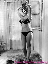Actress Sophia Loren (16) - Celebrity Photo Print