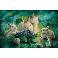 Diamond Painting 5D DIY Rabbit Eating Grapes Full Drill Kits Craft Embroidery