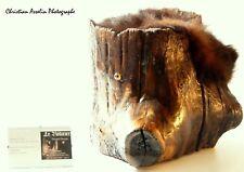 Magnifique Natural Wood Brushed Varnished Black Bear