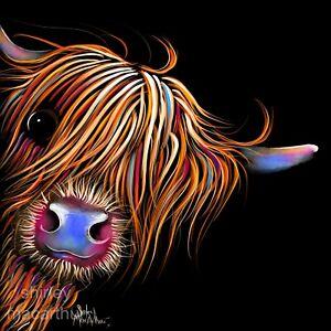 HIGHLAND CoW PRiNTS WaLL ART of Original Painting SuGaR LuMP - SHIRLEY MACARTHUR