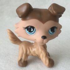 Littlest Pet Shop Animals LPS Toy Mocha Collie Puppy Dog #893 Tear Eyes D1