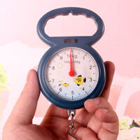 Weighing Express Plastic Scale Luggage Travel Scale Fashion Hand Luggage Scale