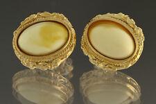 White Egg Yolk Genuine BALTIC AMBER Gold Plated Silver Earrings 3.6g 180611-12