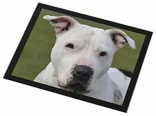 American Staffordshire Bull Terrier Dog Black Rim Glass Placemat Anim, AD-SBT5GP