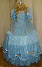 Cinderella Hooped Ex Hire Sale Fancy Dress Outfit Costume