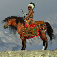 Native American Indian Warrior On Horse Landscape Wild West Man OIL PAINTING