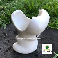CUTE WHITE HIPPO LARGE VOLUME Succulent Cactus Glazed Porcelain Planter Pot