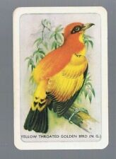 COLES  SWAP CARDS* 1 VINTAGE  WOOLWORTHS  NAMED   GOLDEN BIRD        WHITE EDGE
