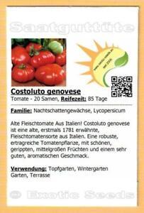 🍅 Tomate 'Costoluto genovese' , Fleischtomate, 20 Samen