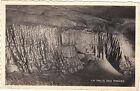 39 - cpsm - Les grottes de Planches près d'Arbois