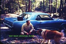 1960's Ford Mustang - Color Slide From 1971 - Great Image - Collie Dog