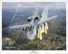 A-10 Thunderbolt II Warthog  Aviation Art Print