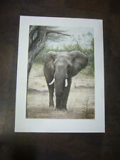 """Ndovu"" print by Dennis Curry 1983 signed"