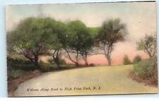 *HAND COLORED Willow Trees Road to High Point Park New Jersey NJ Postcard B73