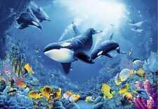 Fototapete DELIGHT OF LIFE 366x254 Korallenriff Orcas Rochen Unterwasser Kinder