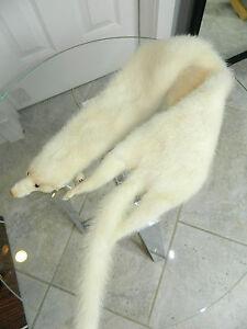 Fox Red White Shapphire Mink Marten Stone Russian sable Head Tail Pelts