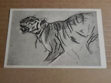 Postcard  Tiger Artist Drawing printed card  Unposted