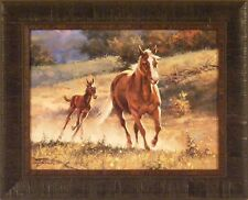 RUNNING WITH MOM by Jack Sorenson 17x21 Horse Colt Pony FRAMED PRINT PICTURE