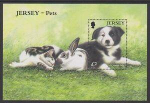Jersey - 2003, Pets, Border Collie Dog sheet - MNH - SG MS1117