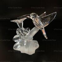 RARE Retired Swarovski Crystal Hummingbird 166184 Mint Boxed Bird on Flower