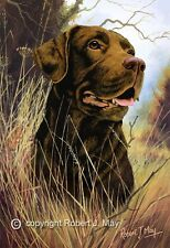 Signed Chocolate Labrador Print by Robert J. May