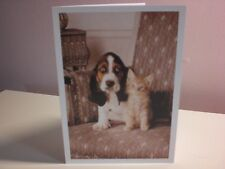 "Northern Exposure - ""Sympathy Card - For passing of Dog or Cat"