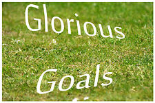 Make Money! Glorious Goals Football Betting Betfair System