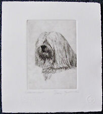 GEOFFREY LASKO - HAVANESE DOG - LISTED ARTIST ORIGINAL ETCHING - S&N - FREE SHIP