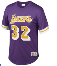 Los Angeles Lakers #32 Magic Johnson Mitchell & Ness Purple Mesh Jersey