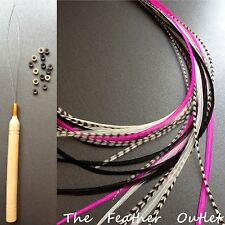 Feathers Hair Extensions Kit Lot 20 Grizzly Natural Pink Black White Zebra KIT