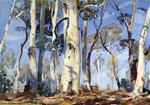 Australian Painting Landscape Bush Country Ghost Gums Trees Fine Art Canvas A3