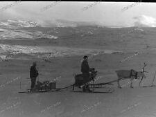 negativ-E-Stelle Arktis-Finse-Ulvik-Hardangervidda-Norway-1944-Renntier-SKI-6