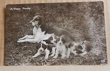 """Postcard Dogs Mother And Pups """" A Happy Family """" Real Photo  posted 1912"""