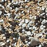 Pumice,Turface & Lava 10 Cups Soil Mix for Long Lasting Bonsai Soil -FAST SHIP