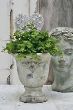Pokal Creme Weiß Zement Shabby Vintage Antik Landhaus Blumentopf Übertopf