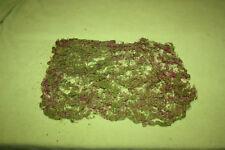 Moos Waldboden Landschaftsbau Matte 30 x 23 cm geeignet für H0 o. größere Spuren