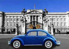 AUTOMOTIVE ART - VW BEETLE - LIMITED EDITION (25)