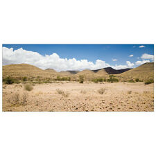 """All Living Things Desert Terrarium Cling Reptile Background large (36""""L x 16""""W)"""
