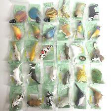 Choco Egg  Pet  Animal Part 2 Mini Figure 30pcs Nomal Complete Set Furuta Japan