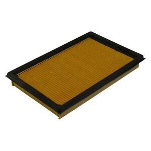 Air Filter   Ecogard   XA5304