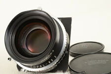 Schneider Symmar-S 240mm F5.6 MC COPAL-No.3 [Very good] from Japan (01-B31)